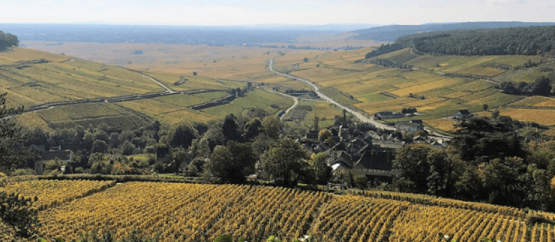 When in Burgundy [Part 2]