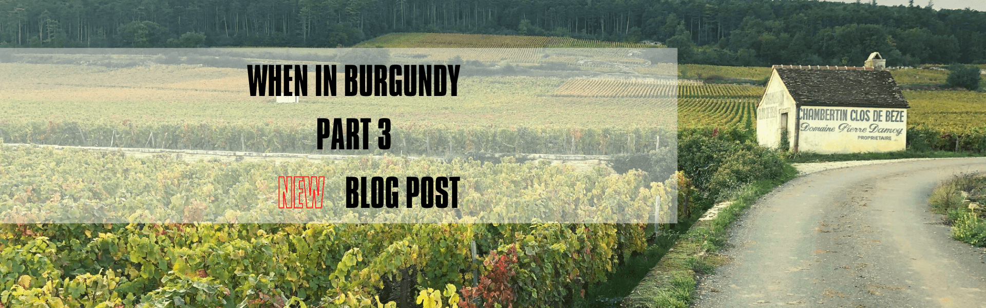 When in Burgundy [Part 3]